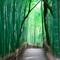 京都デートスポットガイド